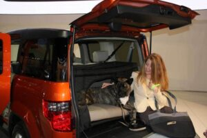 Anyone who says things are going to the dogs should first check out this pet-friendly version of the Honda Element.