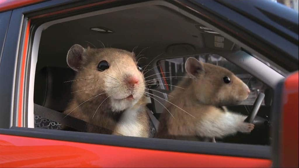 Kia Soul Hamster. Those hip-hop Kia hamsters are