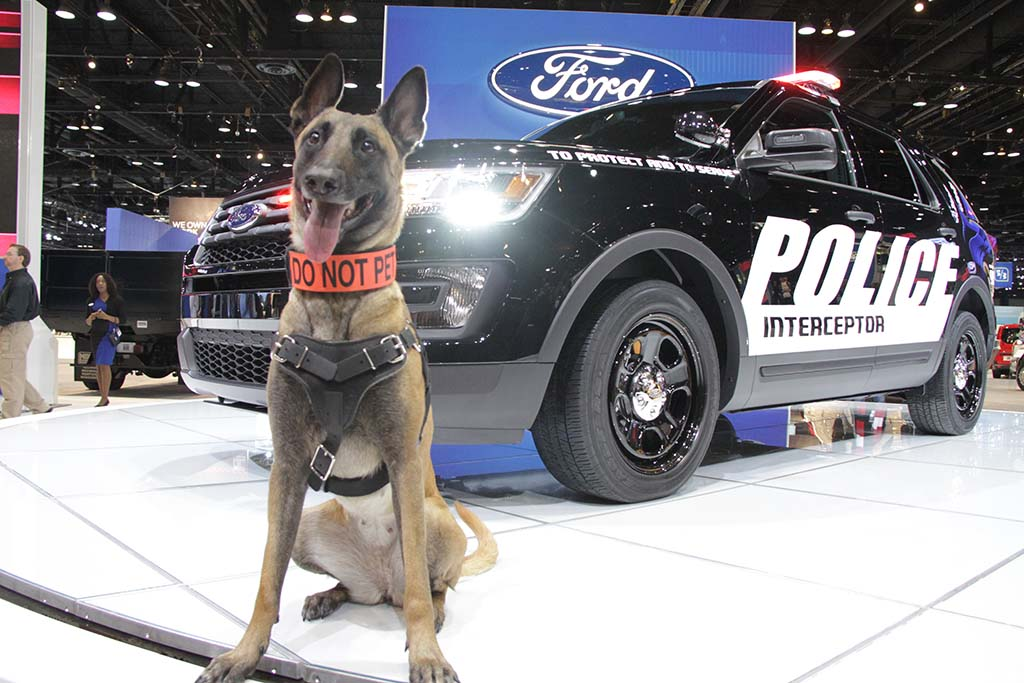 Ford to Repair Police Interceptor Versions of the Explorer SUV